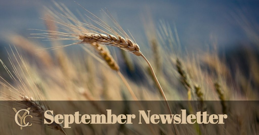 banner 1 1024x537 - September Newsletter