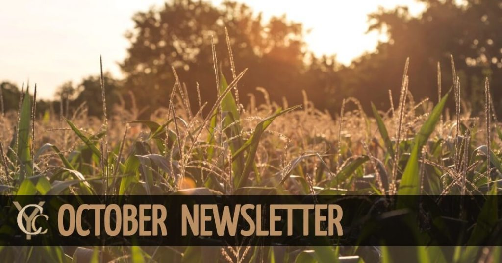 banner 1 1 1024x537 - October Newsletter