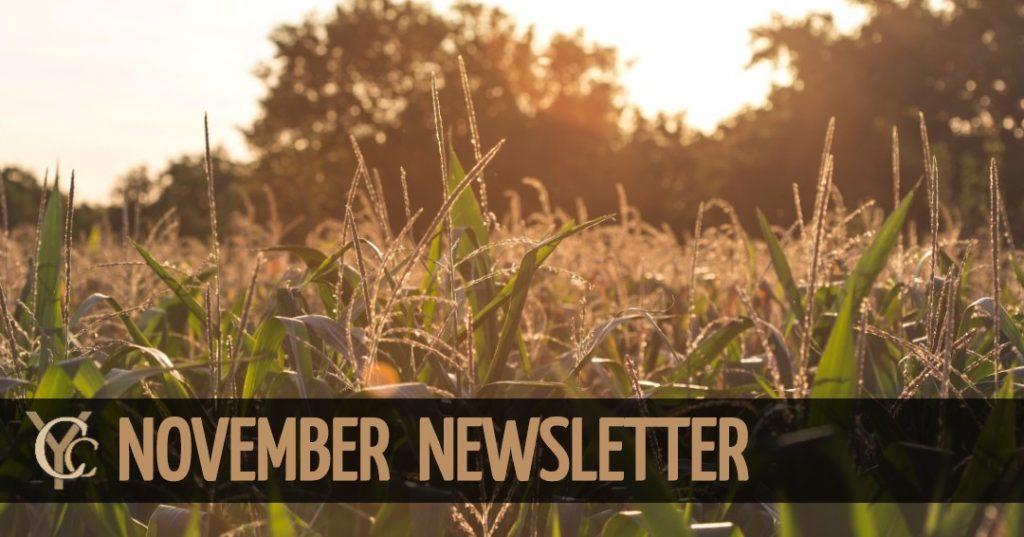 banner 2 1024x537 - November Newsletter