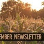 banner 2 150x150 - November Newsletter